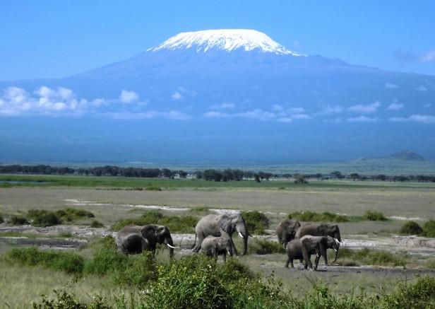 ケニア、タンザニア旅行・ツアー・観光特集   ユーラシア旅行社